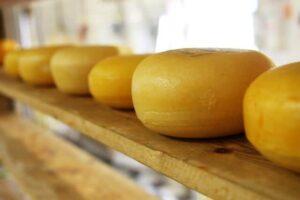 Monroe, a sajtok fővárosa