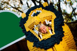 Legoland Florida - Esta Visa