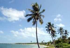 Bahia Honda Beach, USA