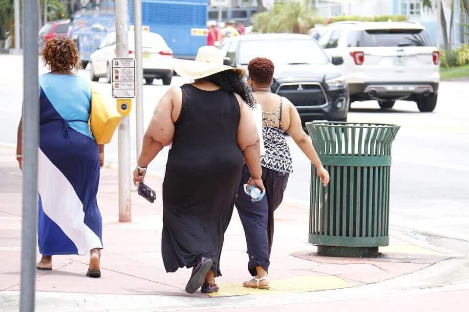 Elhízott társadalom az Amerikai Egyesült Államokban