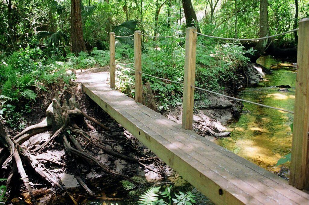 Palm and Cycad Arboretum Jacksonville-en